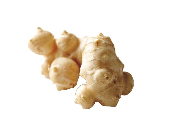 イヌリンを多く含む菊芋