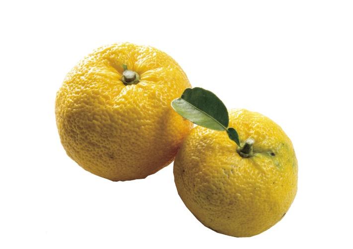 ビタミンたっぷりの柚子